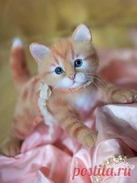 Войлочные котики. Как настоящие!