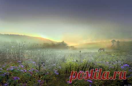 Туманный мир... Фотохудожник Игорь Зенин (Igor Zenin).