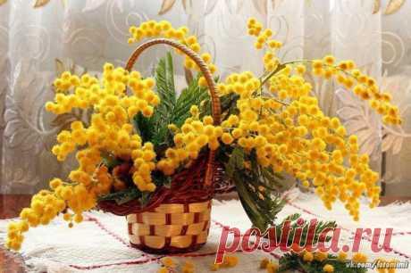 8 марта  Красивые картинки и открытки  vk.com/fotomimi