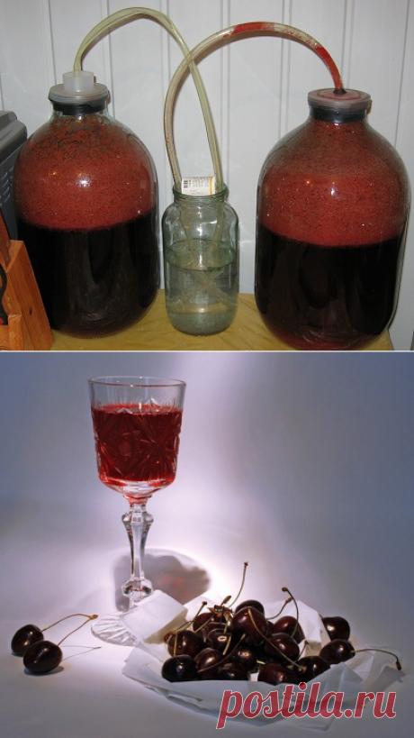 El vino de la guinda en las condiciones de casa - la receta correcta