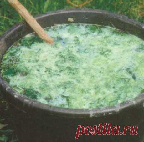 Подкормка помидор в теплице - практические советы | parnik-teplitsa.ru
