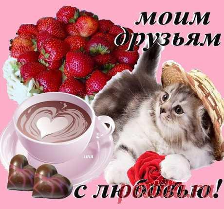 ahanta.ru/index.php?newsid=1155