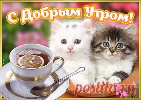 С добрым утром, желаю радости и удачи