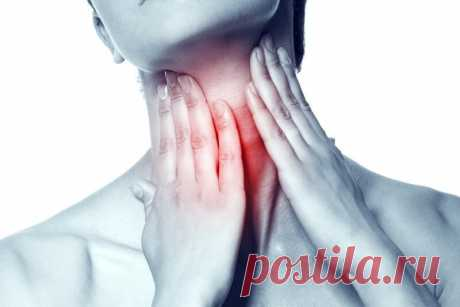 ¿El secreto de la glándula tiroides o queréis adelgazar? — El régimen de todas partes
