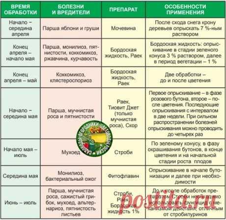 Болезни и вредители сада, сроки, препараты, способы применения