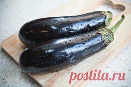 Про баклажаны   Кулинарная школа Оксаны Путан - простые и понятные рецепты с фотографиями