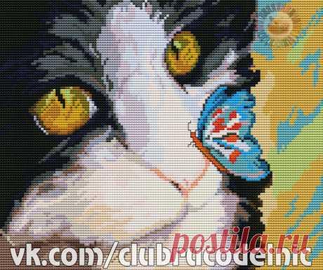 ВЫШИВКА-Кот с бабочкой