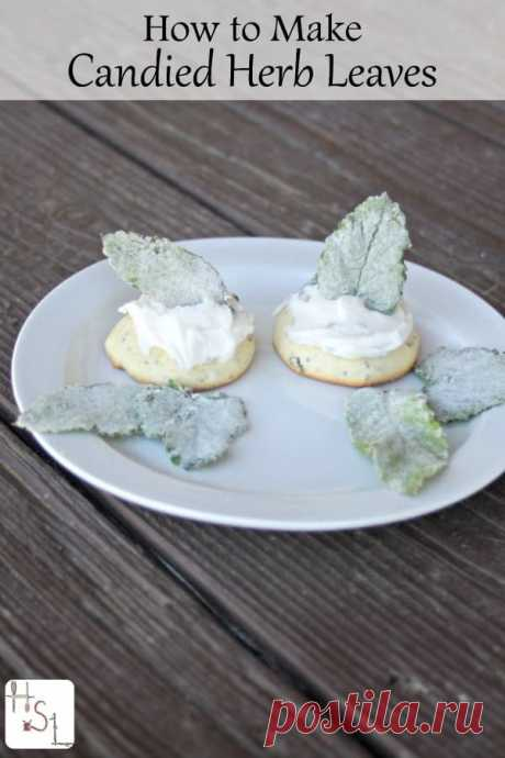 How to Make Candied Herb Leaves Make candied herb leaves as a fun way to preserve homegrown herbs and make a beautiful presentation on homemade baked goods.