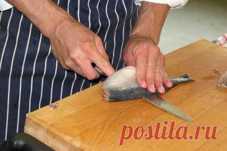 Врачи назвали лучшую дешевую рыбу для ежедневного употребления   Вилкин: рецепты и лайфхаки👩🍳   Яндекс Дзен