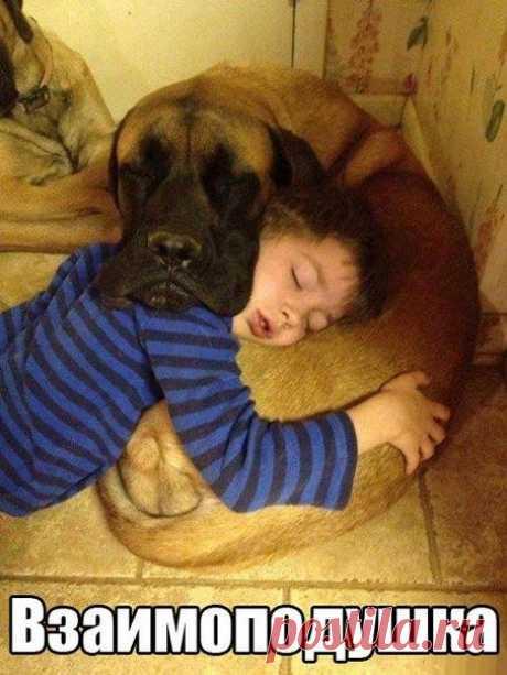 Взаимоподушка - Приколы с детьми