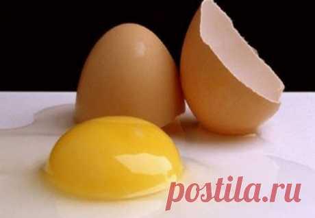 Как использовать яйцо, чтобы получить более густые волосы за 2 месяца