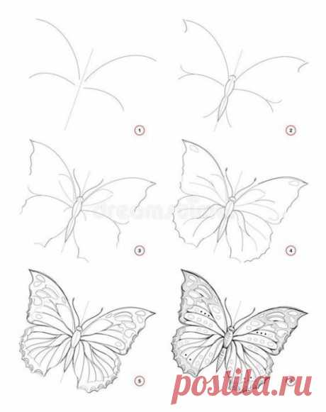 Учимся рисовать с детьми бабочек