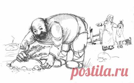 Неопубликованные иллюстрации