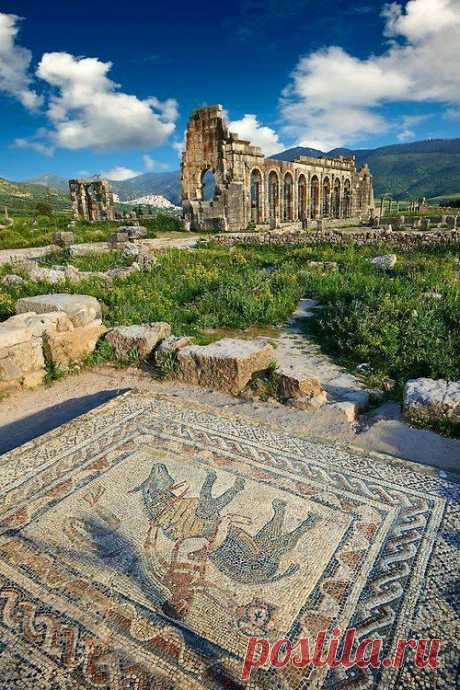 """ancientorigins: """"Beautiful Roman mosaic in the House of the Athlete, Morroco"""""""