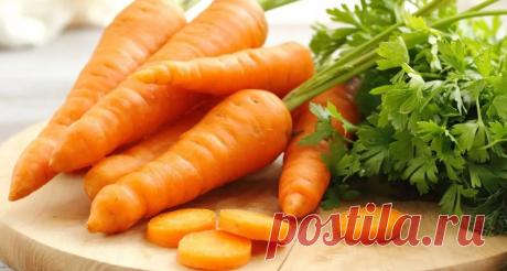 """Морковь всегда есть в моем холодильнике: Покажу, какую """"вкуснятину"""" к обеду, к ужину и даже к чаю готовлю   Вкусняшки   Яндекс Дзен"""