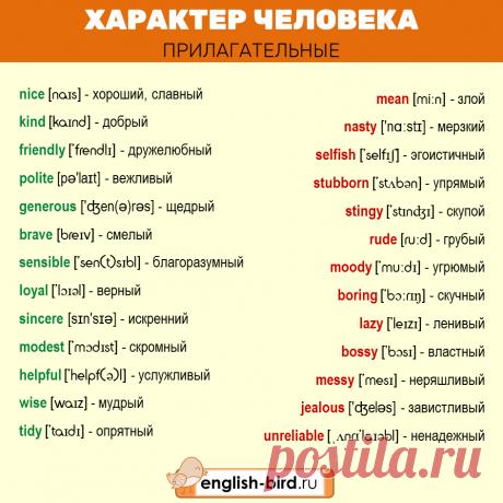 Описание человека на английском языке: слова и примеры