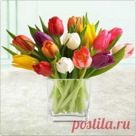 Чтобы цветы дольше стояли...