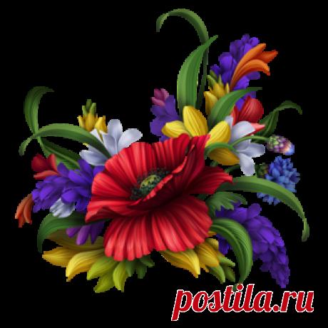 цветочный декор,элементы для творчества png.