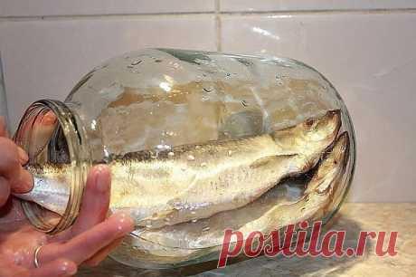 КАК ЗАСОЛИТЬ СЕЛЕДКУ.  А какая получается вкуснятина… Больше никогда не покупаю магазинную соленую селедку! Скажу вам более… этот рецепт великолепно подходит для засолки скумбрии и любой красной рыбы.   Ингредиенты   - сельдь – 1 кг  - поваренная соль – 6 стол. ложки без горки  - перец душистый горошком – 10 шт.  - сахарный песок – 3 стол. ложки  - лавровый лист – 3-4 шт.  - вода – 1 литр.   Приготовление   1. Наливаем в кастрюлю воду и доводим ее до кипения.  2. Добавляем...