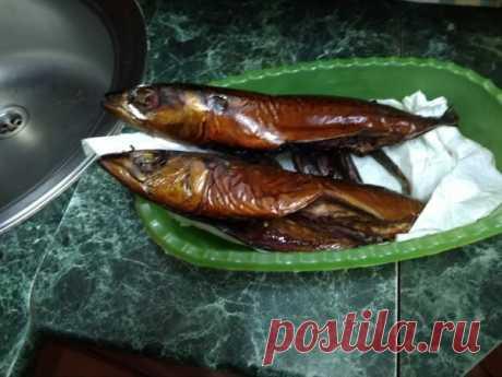 Рыба горячего копчения. Самый простой рецепт (язык проглотишь) | leo.nesmirnyi | Яндекс Дзен