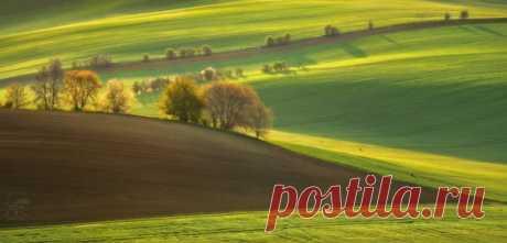 Поля Моравии (Чехия) в кадре Анатолия Гордиенко: nat-geo.ru/community/user/118919