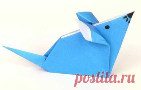 Лучшие оригами из бумаги для начинающих самые легкие схемы Оригами из бумаги для начинающих самые легкие схемы. Самые простые это оригами из бумаги животные. Например, серенькая или беленькая мышка с хвостиком