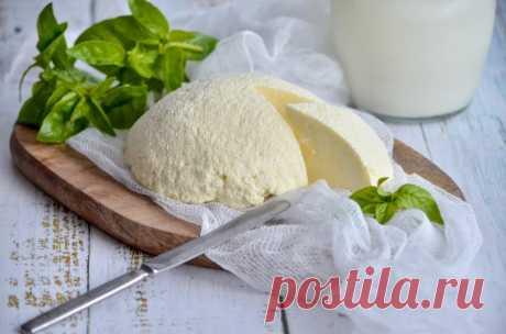 Брынза из коровьего молока рецепт с фото пошагово - 1000.menu