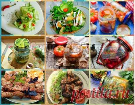 Рецепты вкусного шашлыка +  20 самых вкусных рецептов с огурцами + заготовки из огурцов на зиму!