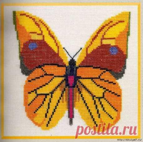 Вышивка крестиком. Бабочки