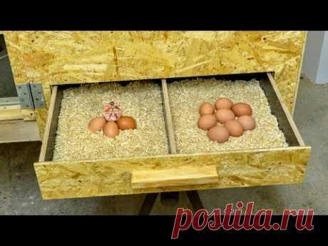 hen house 2\/3