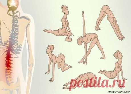 Уже после третьей тренировки по этой схеме ты почувствуешь, как тело стало послушным, а мышцы окрепли.  Если вас мучает острая боль в спине и шее, имеются проблемы с давлением и вы часто просыпаетесь во сне, эти упражнения — то, что вам надо! Данный комплекс составлен из простейших поз йоги для начинаю…