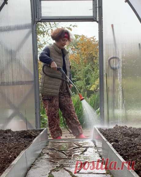 Людмила Кудасова в Instagram: «Делаю это осенью. ⠀ Весной я очень рано сею зелень в теплицу, иногда ещё снег лежит, а я уже редиску посеяла 😉 ⠀ Подготовка теплицы к…»