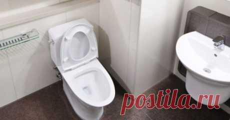 Два волшебных ингредиента, от которых ваш унитаз будет сиять! » Ванную комнату и туалет необходимо регулярно чистить, а унитаз требует много внимания, чтобы предотвратить накопление микробов и бактерий. Но при постоянном использовании, даже в домашних условиях, появляются желтые пятна, которые образуются на спуске и требуют от нас использования химических веществ. Эти абразивные материалы являются токсичными и могут нанести нашему здоровью, вызывая проблемы с дыханием, ра...