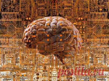 Нейросети: что это такое и как работает За последнюю пару лет искусственный интеллект незаметно отряхнулся от тегов «фантастика» и «геймдизайн» и прочно прописался в ежедневных новостных лентах. Сущности под таинственным названием «нейросет...
