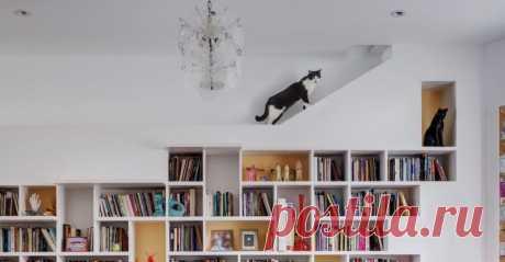 Кошкин дом: пара из Бруклина создала идеальный интерьер для своих питомцев Счастливые котовладельцы точно знают, что хозяева в их доме — это коты, а они просто гости. Кто-то ставит в комнатах кошачьи домики и когтеточки, кто-то