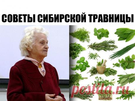 VIVO ES CURADO VIVO. \u000a\u000a\u000a— ¿Elena Fiodórovna, por qué más vale beber la hierba, y no aceptar la pastilla? \u000a\u000a— A mí era la conversación con los médicos: «¿Para que curáis por las pastillas muertas? Allí el pulido, el estampado, los colorantes, la química». \u000a— «Y sus hierbas también seco, muerto». \u000a— «Por mis hierbas toda la Rusia era curada. \u000aTodo el ganado comía las hierbas secas. \u000aLas vacas daban la leche, la oveja — la carne. \u000aSignifica, estas hierbas no muerto. \u000a\u000aAquí la semilla seca del hinojo. \u000aY de él crecerá un alto hinojo, que florece. \u000aPlanten su...
