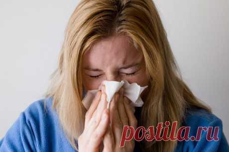 Что может случиться, если не лечить насморк?   CityWomanCafe.com