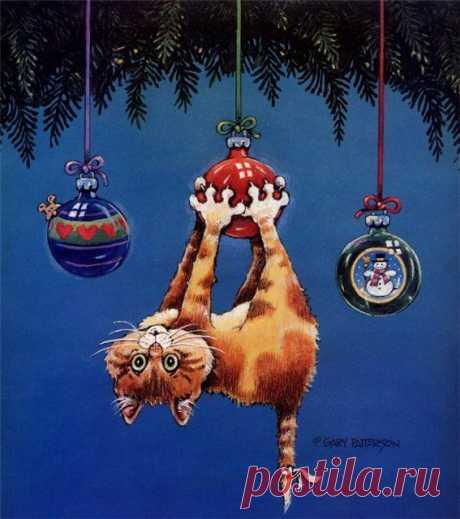 Коты-котейки))), картинки, коты