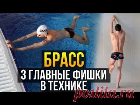 Техника плавания брассом. Руки, ноги