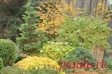 Советы агронома. Какие работы провести в огороде в октябре и что посадить?  Огородники делятся своими секретами. Осеннее огородничество у садоводов в чести, ведь оно дарит в последние теплые осенние деньки не только полезный и вкусный урожай, но и возможность провести время в кругу семьи за увлекательными занятиями на свежем воздухе. Осенняя уборка – это, конечно, не последнее дело в садово-огородном сезоне, а лишь один из его элементов. С осени надо многое сделать, чтобы весной иметь возможно…