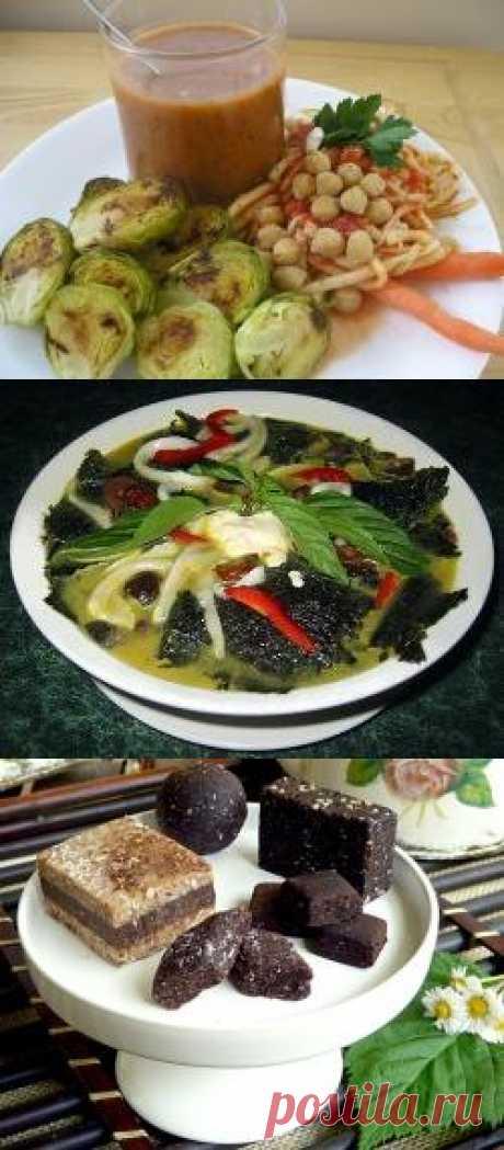 Рецепты, используемые в сыроедении. Популярные блюда сыроедческой кухни