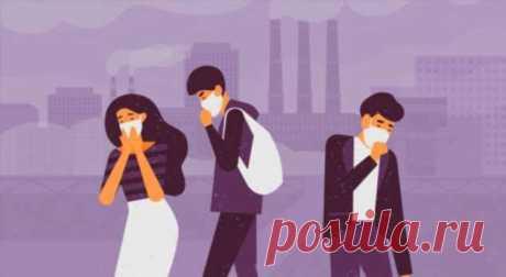 Что опаснее — жить в мегаполисе или курить? . Милая Я