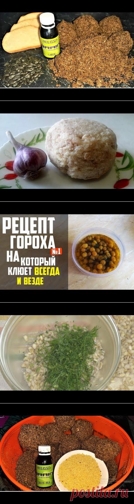 (2) ЛУЧШАЯ ПРИКОРМКА из ХЛЕБА на КАРАСЯ и ВСЮ МИРНУЮ РЫБУ - YouTube