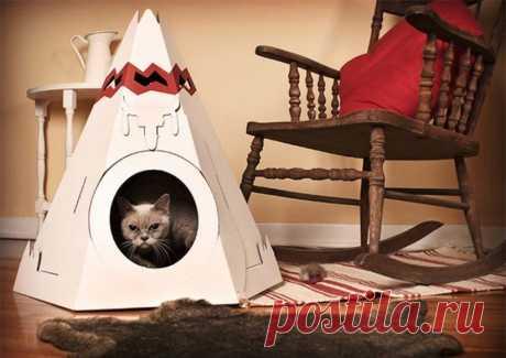 Как сделать кошачий домик своими руками: фото и инструкция