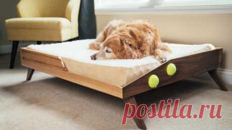 Кровать для любимой собаки Кровать для собаки... Сельскому жителю не понять такие изыски, но если собаке, а главное хозяину нравится, то почему бы и нет? Инструменты и материалы:-Доски (дуб и грецкий орех);-Фанера;-Шканты;-Теннисный мяч;-Матрас для собаки;-Эпоксидная смола;-Маркер;-Линейка;-Гигрометр;-Циркулярная