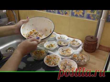 Чем кормить йоркширского терьера - видео обзор Светланы Пискун