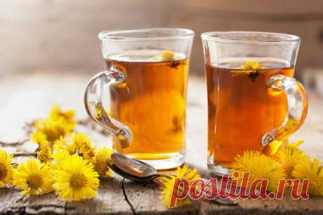 How to strengthen immunity and to lower disturbing symptoms by means of herbal tea