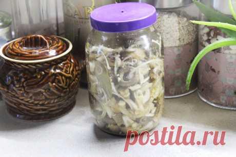 Хрустящие грибочки сухого посола - рецепт с фото пошагово Хрустящие грибочки сухого посола - пошаговый кулинарный рецепт приготовления с фото, шаг за шагом.