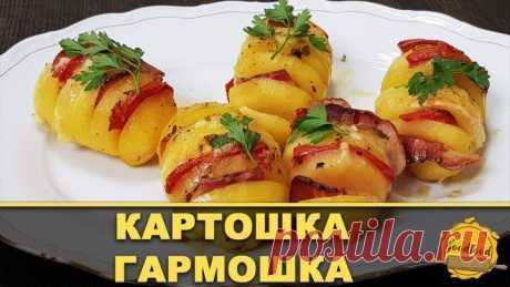 Картошка-гармошка