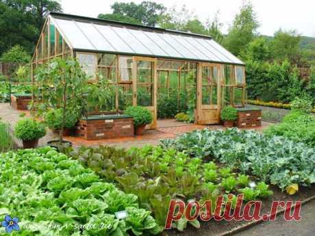 6 ГЛАВНЫХ ПРИНЦИПОВ ПЛАНИРОВКИ ПРИУСАДЕБНОГО УЧАСТКА Теперь я точно знаю, как сделать сад удобным и урожайным!